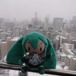 A view of Sapporo city from the Noria Ferris Wheel!